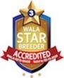 Sweet Lake Doodles Wala Star Logo.3.00425